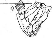Крийя для укрепления нервов, пупочного центра и поясницы